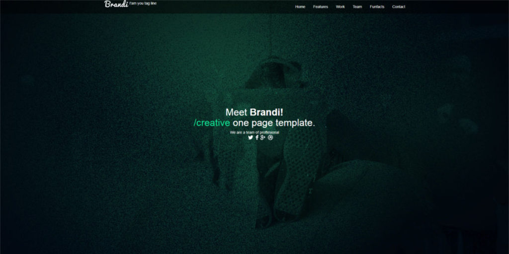 Screen Strony z PSD - Brandi